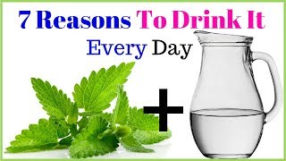 Drink mint leaves water every day | And get 7 surprising health benefits