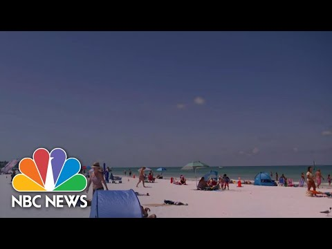 Florida Reports Nearly 10,000 New Coronavirus Cases In One Day As State Halts Reopening | NBC News