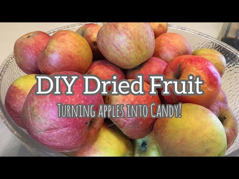 DIY Dried Fruit   Turning Apples into Candy