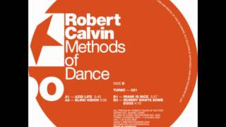 Robert Calvin - Blind Vision