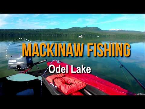 Mackinaw  Fishing - Monster Of Odel Lake