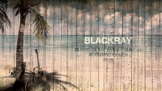 Sum 41 - Blood In My Eyes (Blackray Acoustic Cover 2015)