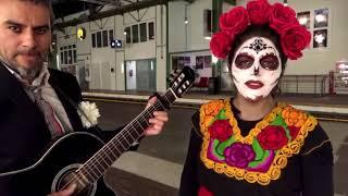 """""""Paloma negra"""" - Marisa Alvarez (pedacito)"""