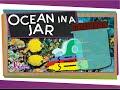 Make the Ocean in a Jar!