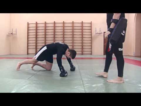 Индивидуальная тренировка: драка, кикбоксинг, ушу саньда, рукопашный бой, мма, тайский бокс, кунг-фу