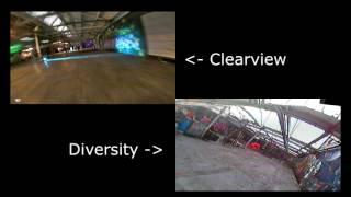 Clearview vs Diversity