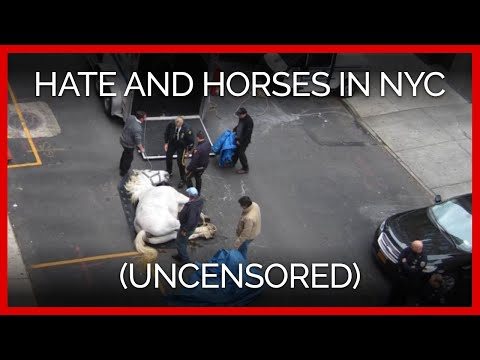 Hate and Horses in NYC (Uncensored)