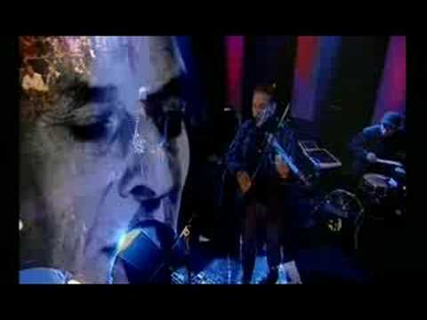 John Cale - Venus In Furs (Live)