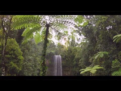 The Ultimate Road Trip - Queensland, Australia