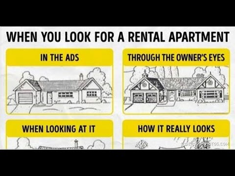 15 Things You Should Know Before Renting an Apartment