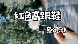 중남이 추천하는 중국노래 - 红色高跟鞋/빨간하이힐[가사…
