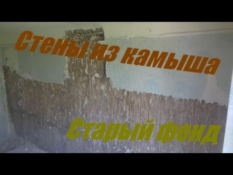 Бамбук и камыш натуральные обои и природные материалы