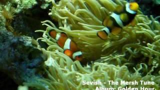 Sevish - The Mersh Tune (microtonal music)