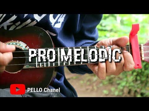 Pro Melodic -