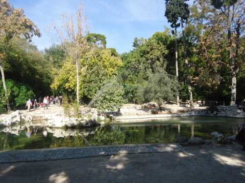 Греция. Афины. Королевский парк или Национальный парк.