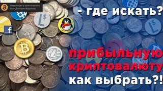 Инвестиции в Bitcoin   Обучение заработку на криптовалюте #Криптоконсультант Максим Кудашев