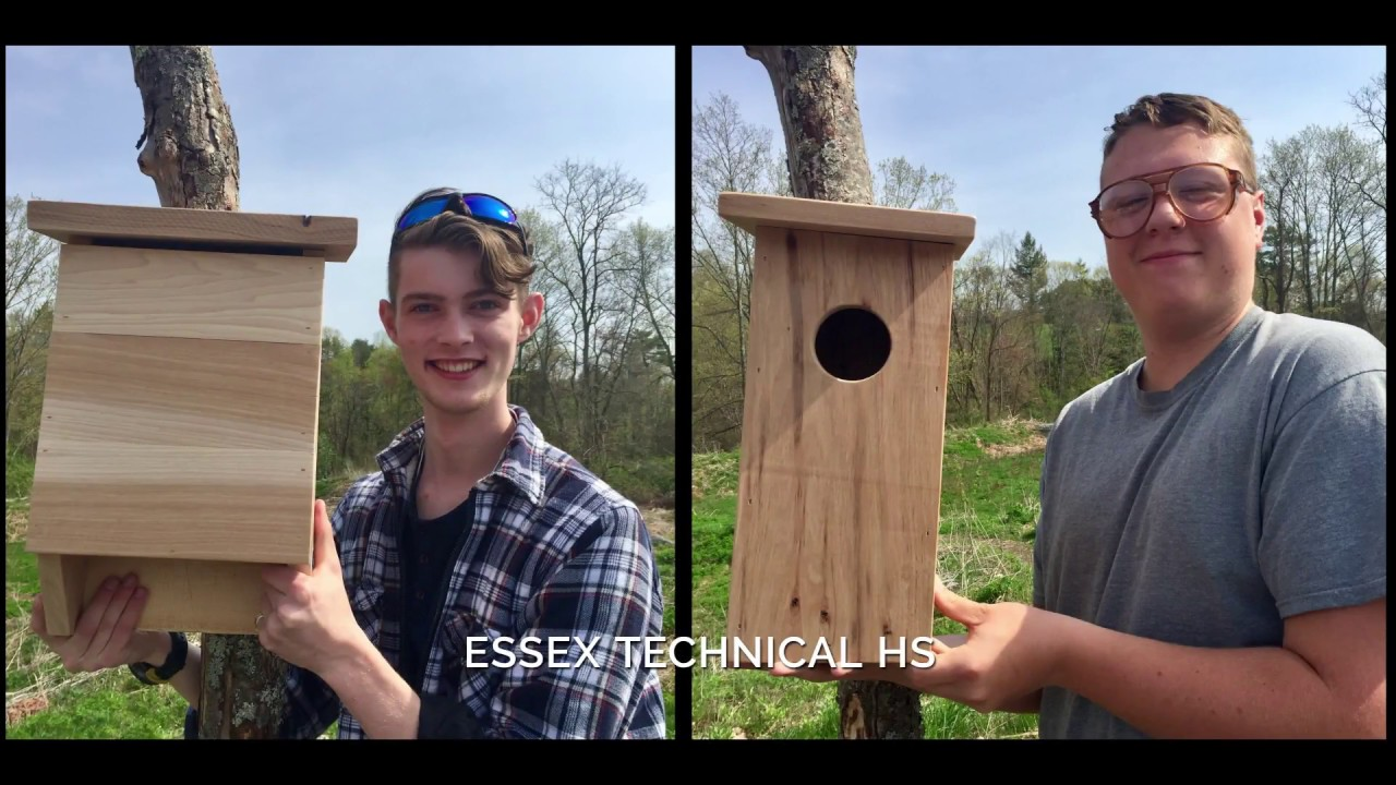 2018 Eco-Carpentry Challenge