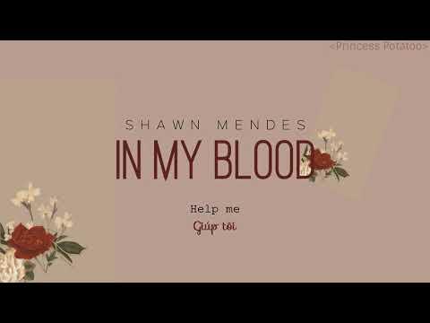 [Vietsub+Lyrics] In My Blood - Shawn Mendes