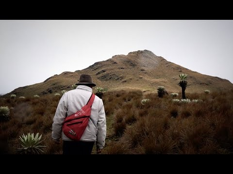 Colombia Travel Vlog - Episode 4