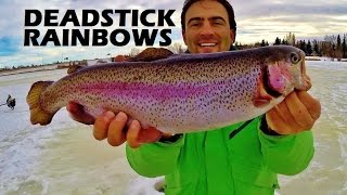 How to Catch Big Rainbows Dead Stick