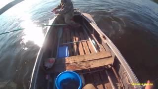 Рибалка 2016 рік річка Ангара. Ловимо харіуса.