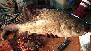 Amazing Catla Fish Cutting Skills Live in Fish Market 2020 || Fillet Katla Big Fish Slicing