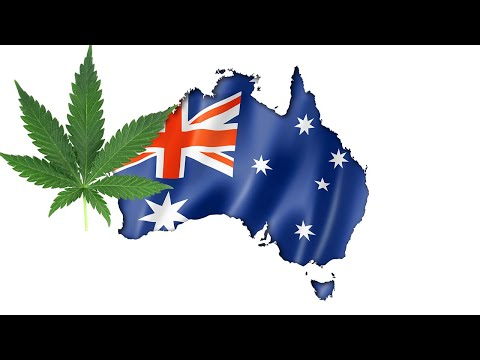 Should Australia Legalise WEED