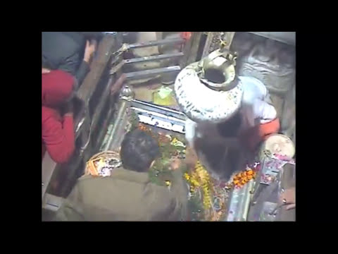 Kashi Vishwanath - LIVE Darshan