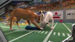 Puppy Bowl IX: A Year of Excessive Cuteness   Puppy Bowl IX