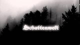 Schattenwelt - Totholz I