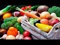 блюда из овощей рагу