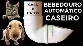 COMO FAZER BEBEDOURO AUTOMÁTICO CASEIRO PARA CACHORRO E GATO