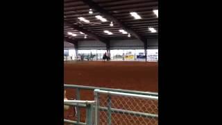 Cowboy Mounted Shooting