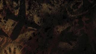 Video Annie Lennox - Lost download MP3, 3GP, MP4, WEBM, AVI, FLV Juli 2018