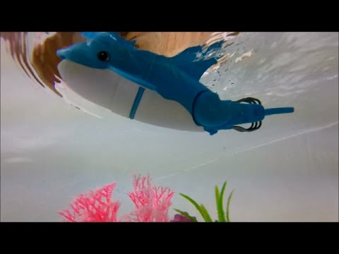 Bath Toy Fun Unboxing Hexbug Wahoo And Lil Fishys Underwater Gopro Kids Bath Time Playing