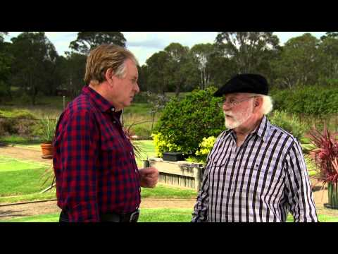 Graham Ross talk to Peter McMaugh about Kings Pride soft leaf buffalo