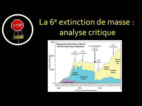 FAQ: Sixième extinction, analyse critique