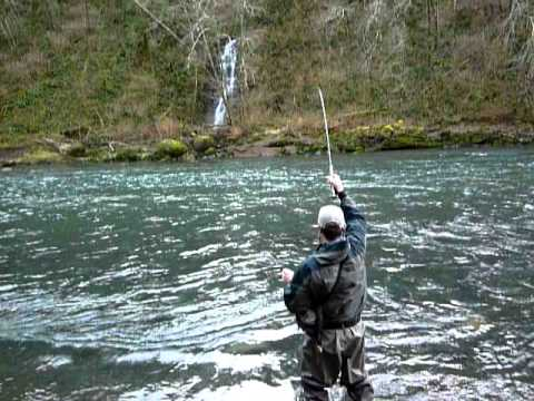 Winter steelhead fly fishing oregon north coast river for Oregon steelhead fishing
