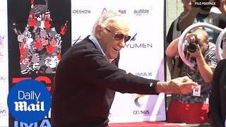 Fans mourn loss of Marvel comics legend Stan Lee