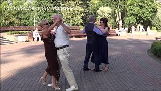 Шикарные женщины и красивые мужчины танцуют в парке!