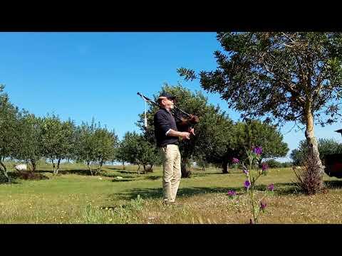Baixar robert mathieson - Download robert mathieson | DL Músicas