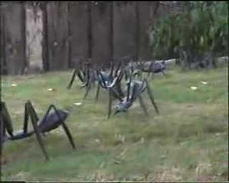 Hormigas en el jardin youtube for Hormigas en el jardin