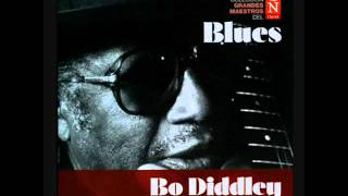 Bo Diddley   Grandes maestros del blues 4