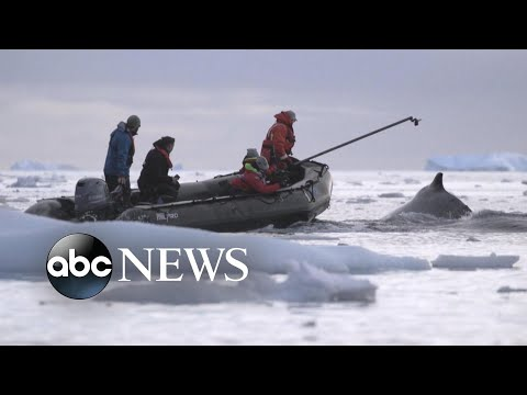Researchers brave brutal conditions to research climate change in Antarctica: Part 1