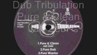 Pure & Clean-Jah Zebi__Pure Dub__Pure Warrior-Dub Tribulation (Dub Tribulation)