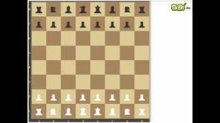 3.  Конь.  Король.  Пешка - шахматные уроки для новичков