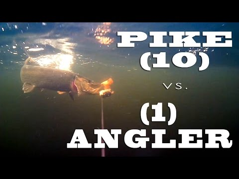 How Many Strikes Do We Have? Trolling For Pike Underwater.