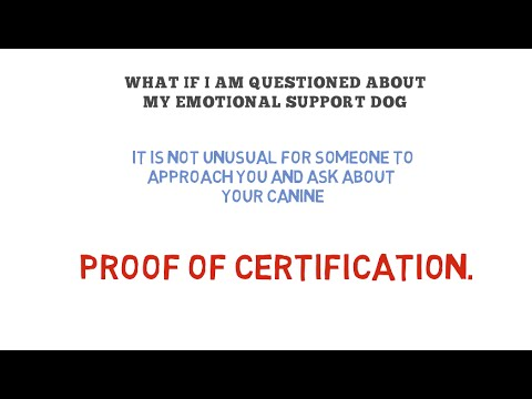 Emotional Support Dog Registration - YouTube
