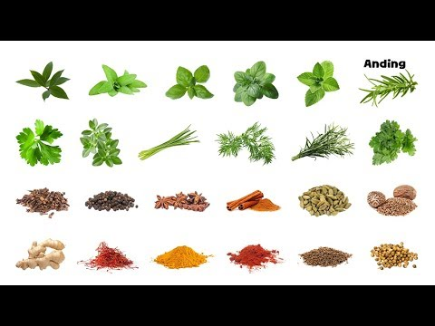 Herbs And Spices - Picture Play