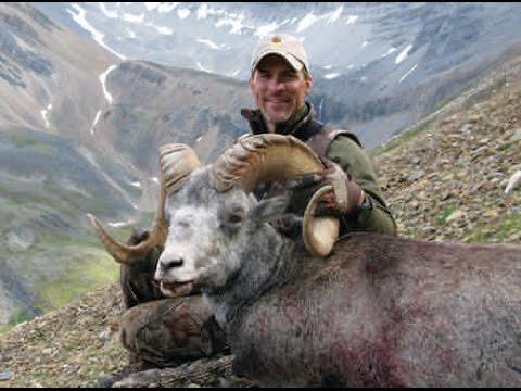 Magnum TV S4:E8- - Stone Mountain Adventure.  Stone sheep and a black wolf!